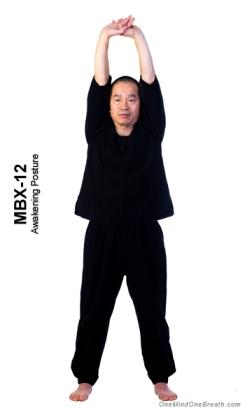 mbx1 awakening x350