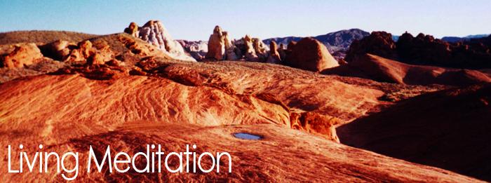 living desert waterx700