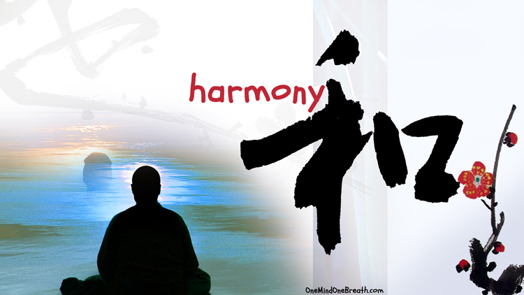 100 Day Meditation: My Experience Part 2 Harmony