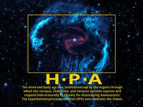 HPA blog