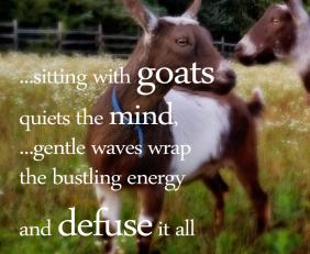 Sky-like Stillness: Of Goats and Mind
